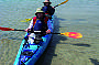 Dolphin Sanctuary Kayaking Tour PM