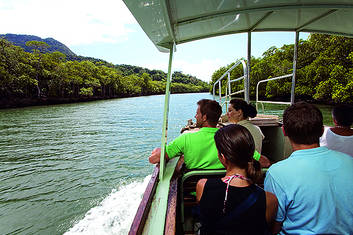 Cape Tribulation & Daintree Deluxe Day Tour