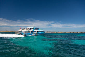 Same Day Return Perth to Rottnest Island
