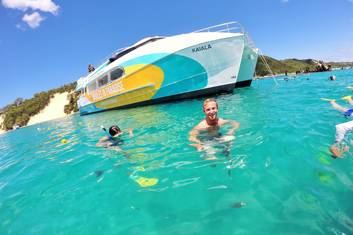 Dolphin & Tangalooma Wrecks Cruise from the Gold Coast